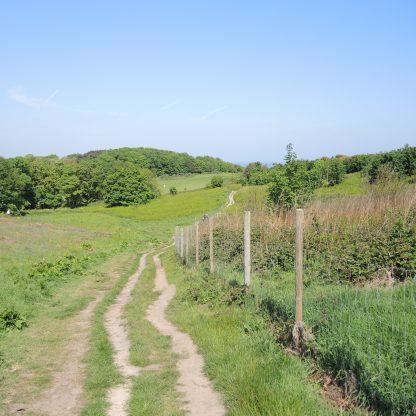 Clifftop walk to Cromer